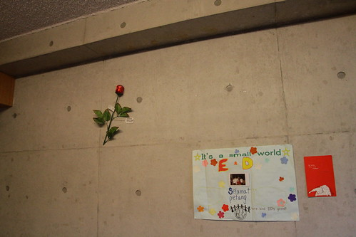 A rose, a gift from Nasu camp and a postcard