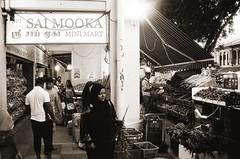 新加坡自助四日遊(下1)-小印度區