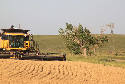 A combine and windmill, does it get any better?