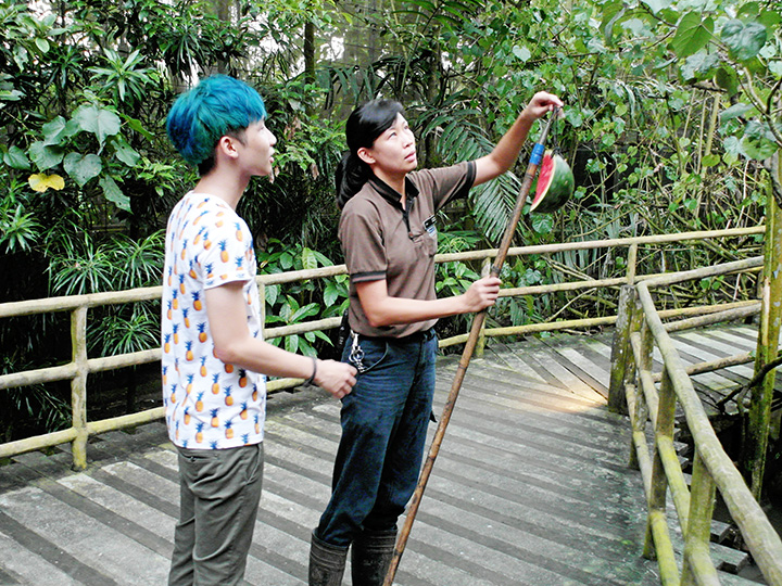 typicalben learning how to be zoo keeper singapore