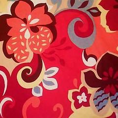 hibiscus taupe