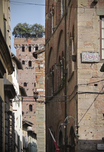 Guinigi Tower, Lucca