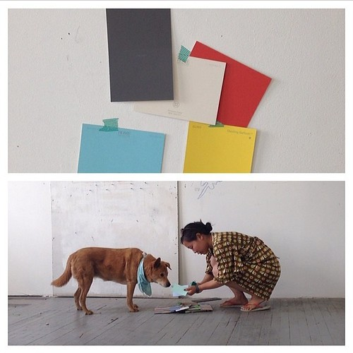 Daisy is helpful! #Daisydog helping pick out colors for new studio yesterday (photos by & RG'd from @danedlion). #dog #studio #latergram