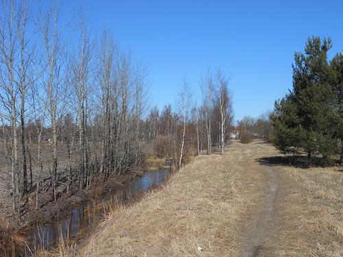 Niittynäkymä, Pohjois-Tapiola Espoo 10.4.2014