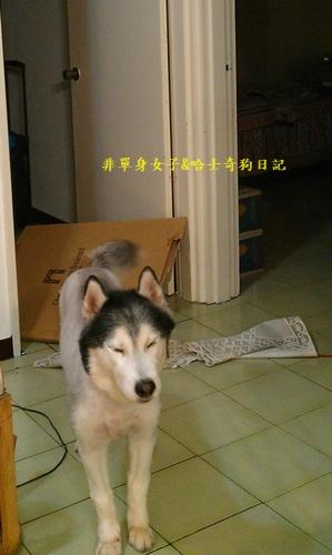 IMAG6637