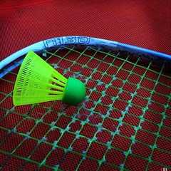ball(0.0), circle(0.0), ball(0.0), strings(1.0), red(1.0), sports equipment(1.0), rackets(1.0), mesh(1.0), green(1.0), net(1.0),