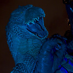 MIDTOWN_meets_GODZILLA_light_up-42