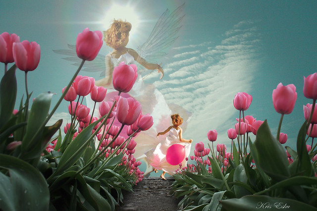 Angel Spring