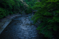 Takao in the early summer evening (Kyoto) / 初夏の高雄(京都)