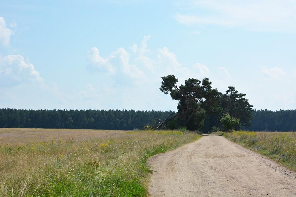 NationalparkMüritz_13