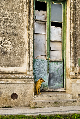 Autor: Mario Donati