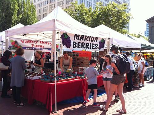 Marion berries