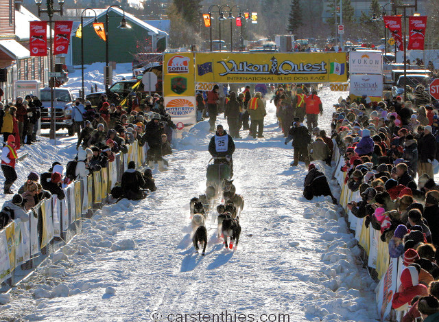 Yukon Quest 2007 - Start (Whitehorse)