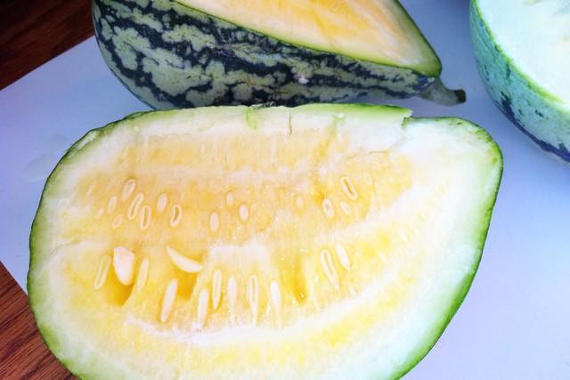 Orangeglo Melon