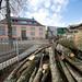 2017_03_02 abattage arbres école Niederkorn