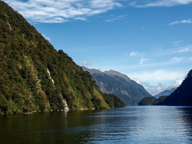 Doubtful Sound. South Island, New Zealand.