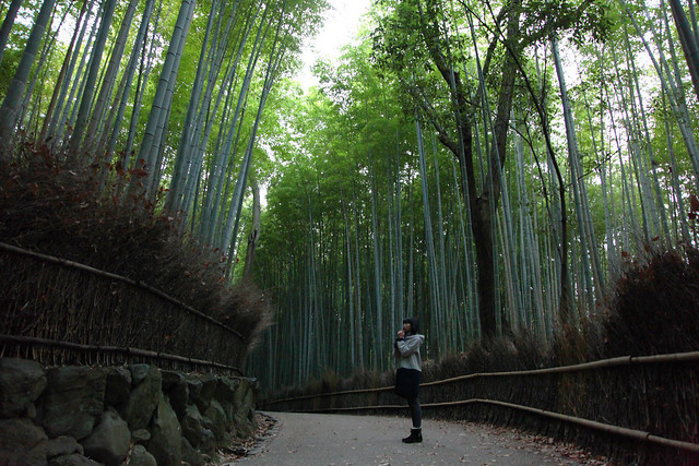 Athena at Arashiyama Bamboo Grove