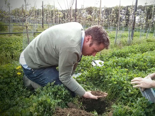 GREATsoils - assessment tools at Loddington Orchard in Kent