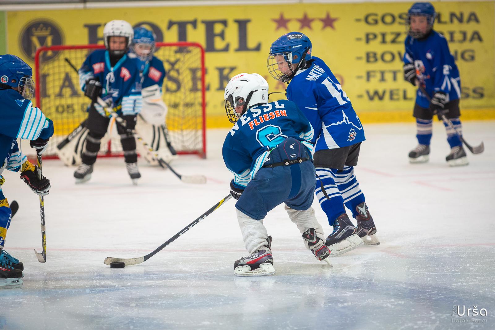Fox Trophy Kranj 2017 - 2. dan