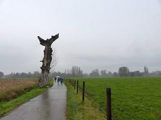 Euselsweg, Buggenhout