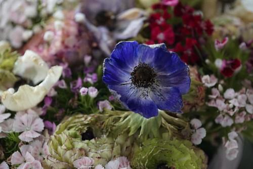 @giianlucano @alejandra5689 #padrini #madrine #flowers