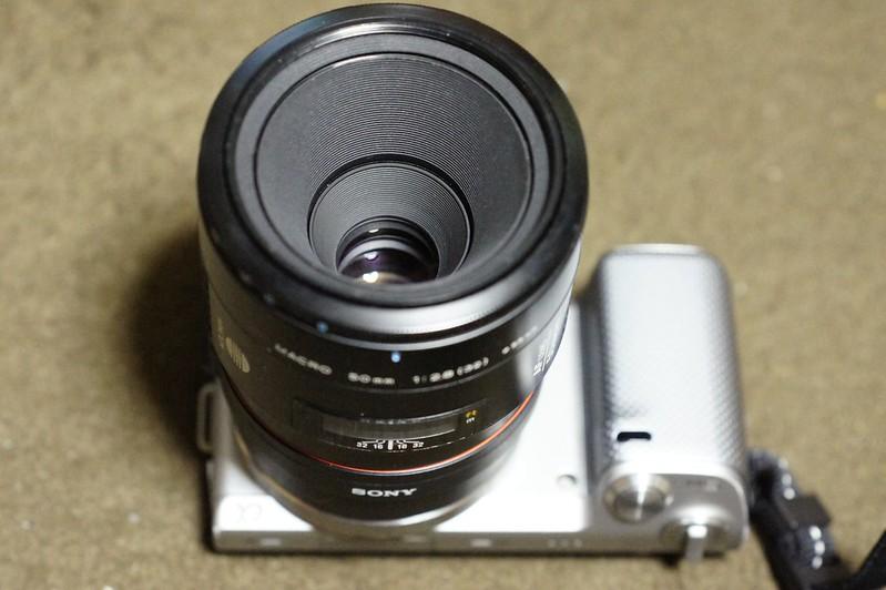 NEX-5N MINOLTA AF Macro 50mm F2.8