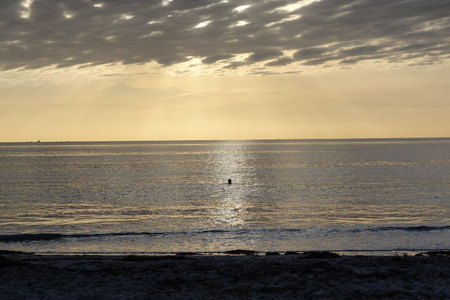 Sunset swim at Semaphore