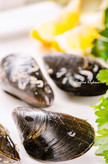 fresh mussles