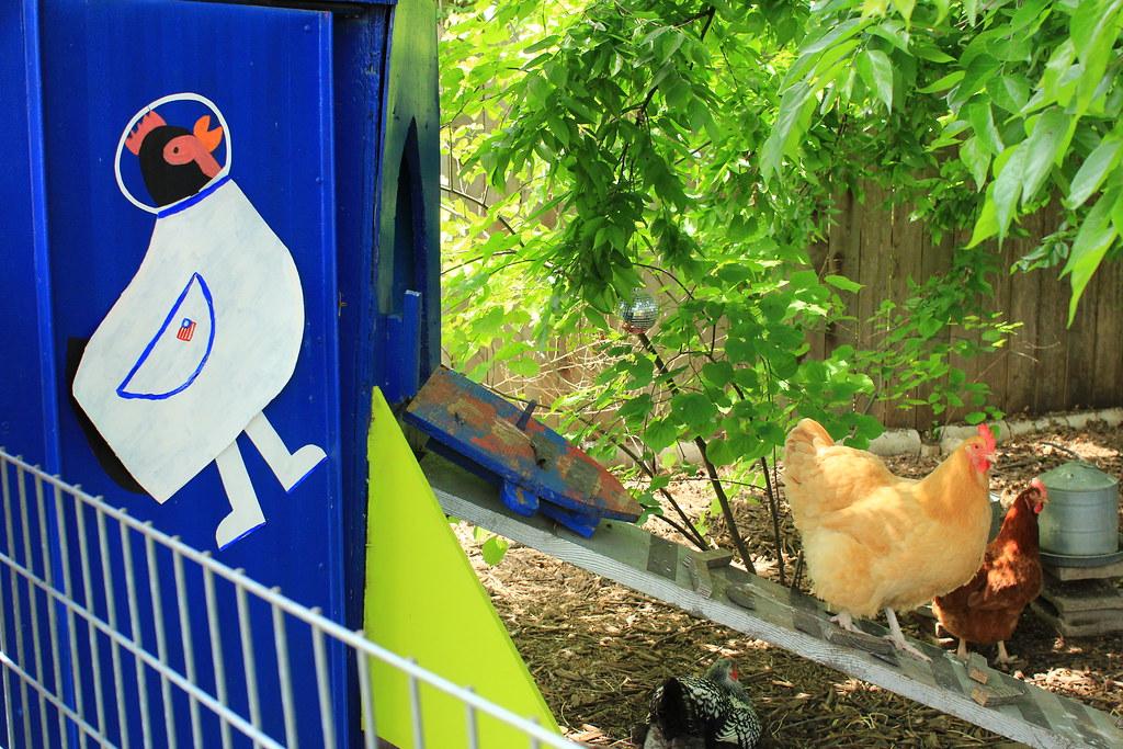 2014.04.19_fcct_5.bliss_eggsplorer_chickens2