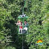 rainforest-aerial-tram (Copy)