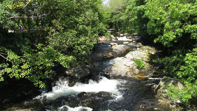 The River Erme, Ivybridge