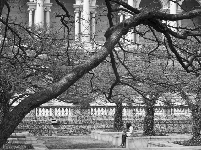278/365 - Art Institute South Garden