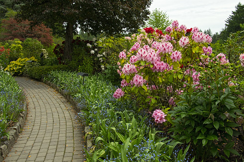 2014-05-22_143 Butchart Gardens