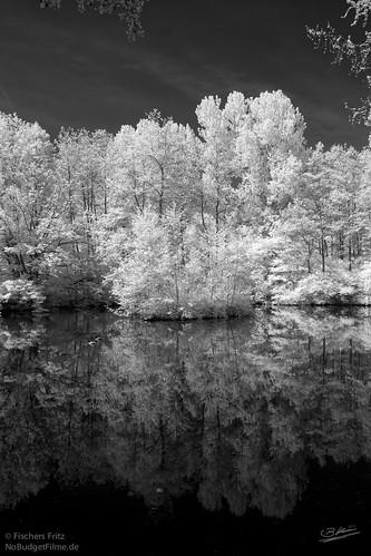 Spiegel-Infrared.jpg