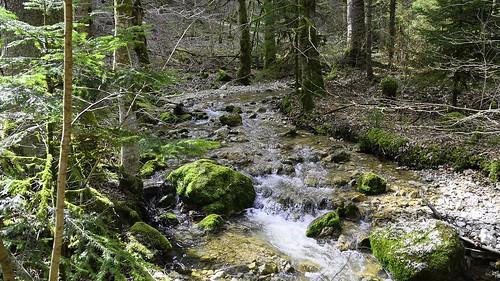 geotagged schweiz switzerland wasser suisse hiking natur che wandern wather cantondeneuchâtel pouettaraisse nikonschweiz d5300 capturenx2 ponte1112 môtiersne nikkor18200vrll viewnx2 geo:lat=4689881624 geo:lon=661247634