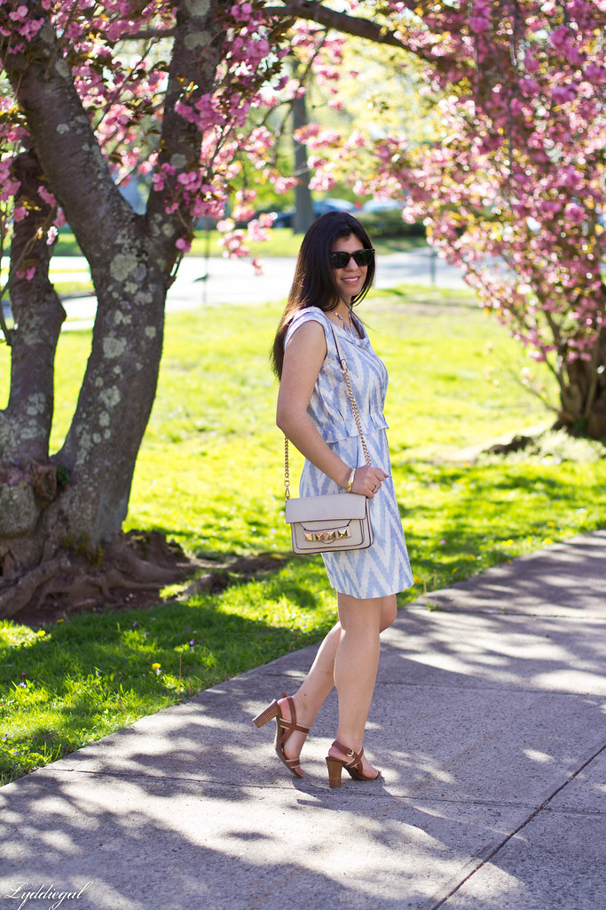 chevron dress, cherry blossom trees-2.jpg