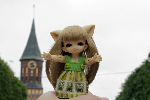 Emilia and Königsberg Cathedral