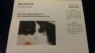 Josie's calendar day