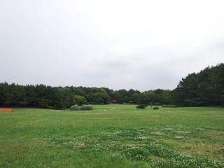 140624_Inagekaihinkoen_21