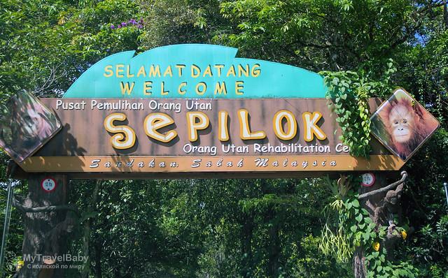 sepilok001
