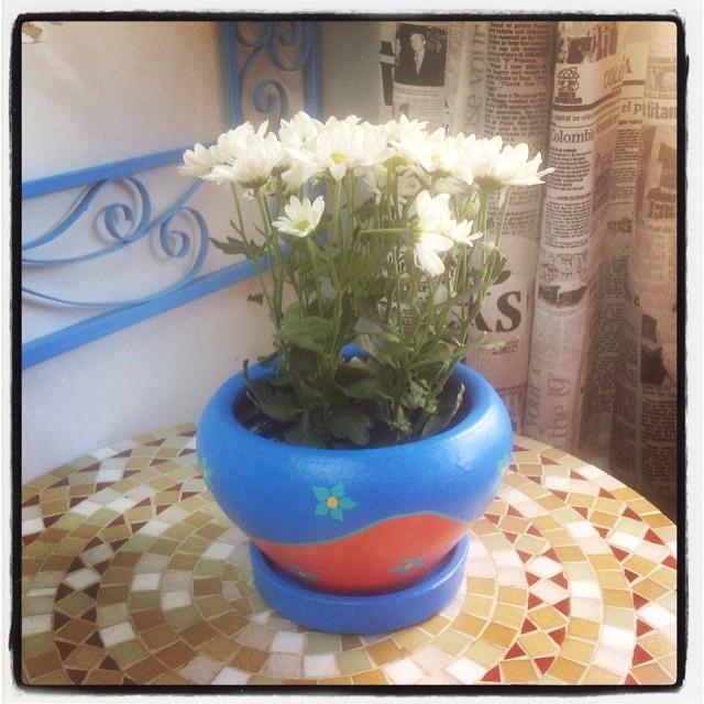 Flores pra vocês! ❤️ #vasocolorido #vaso #pintura #flor #flower #alemdarua #alemdaruaatelier