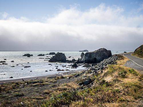 Coastal Redwoods and Fog-103