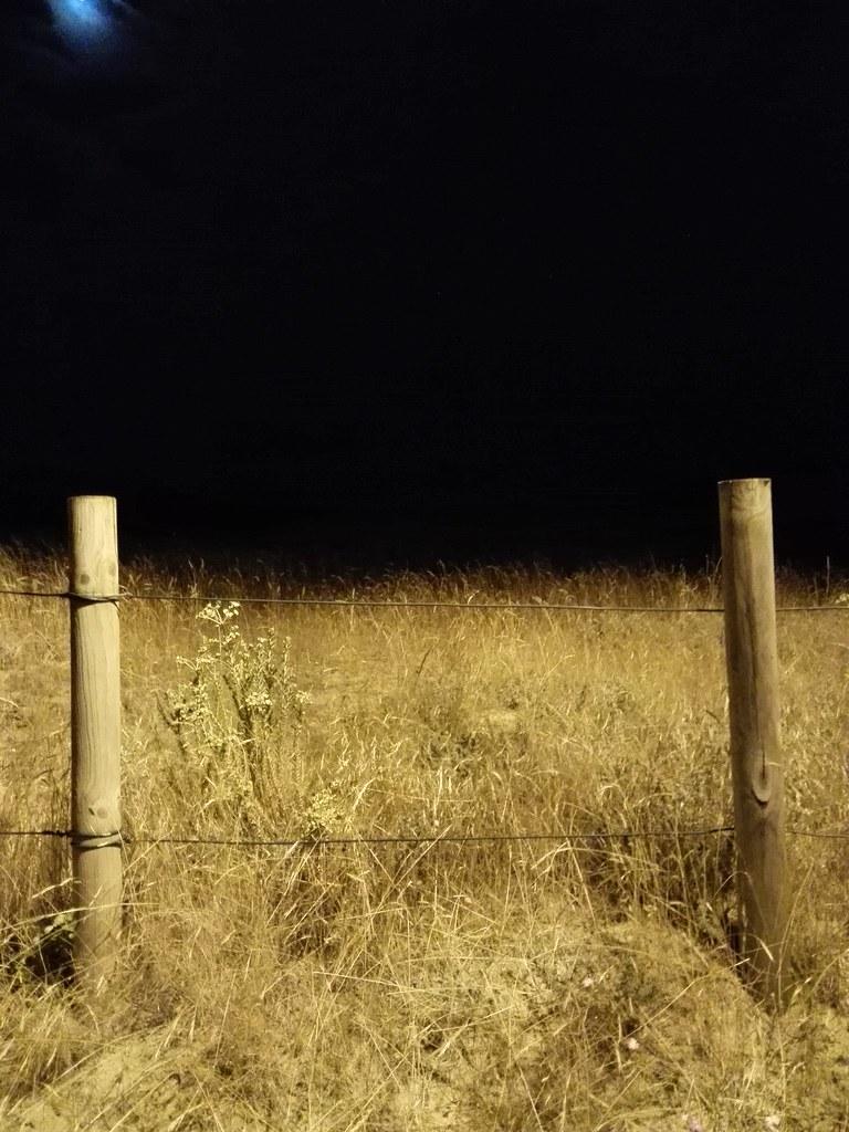 El límite [280/365]