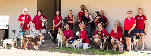 Animal House Team Photo-7963