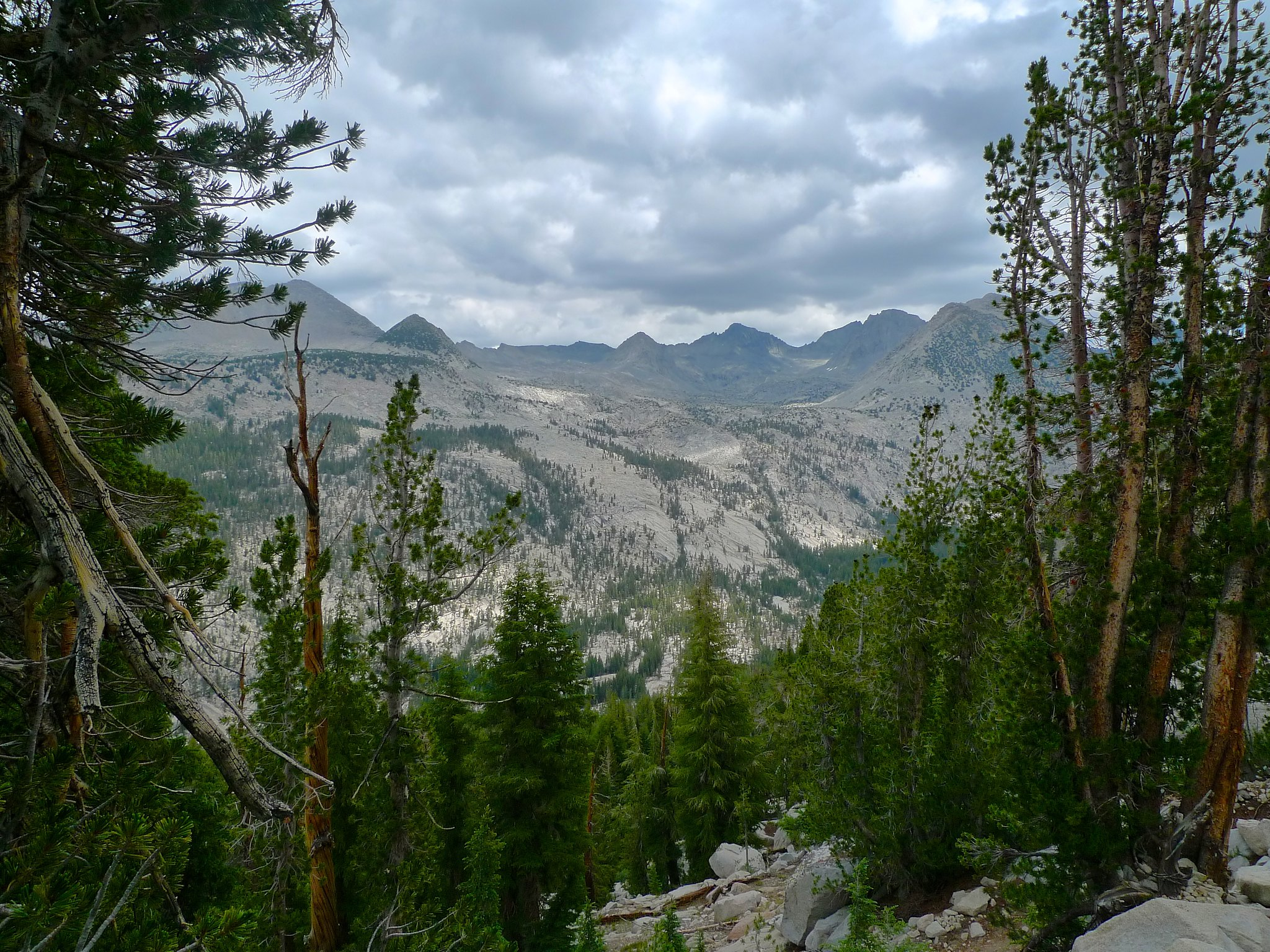 Looking north across the canyon of the Lyell Fork of the Merced