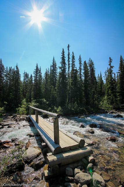 Skyline Trail Flickr-005