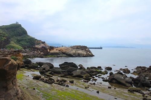 北海岸之旅-野柳地質公園2