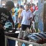 Beruwala Fish Market  GRB_8987