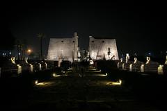 Sphinx avenue and Luxor temple