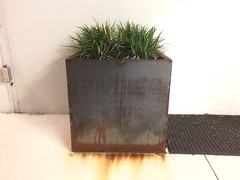 Grass Steel pot